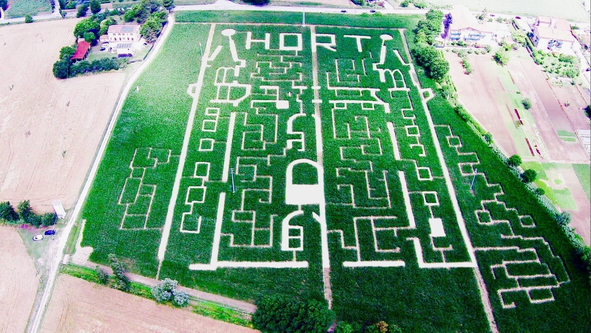 labirinto di mais, labirinto italia, labirinto senigallia, labirinto , maze italy, corn maze italy, big corn maze italy, hort labirinto