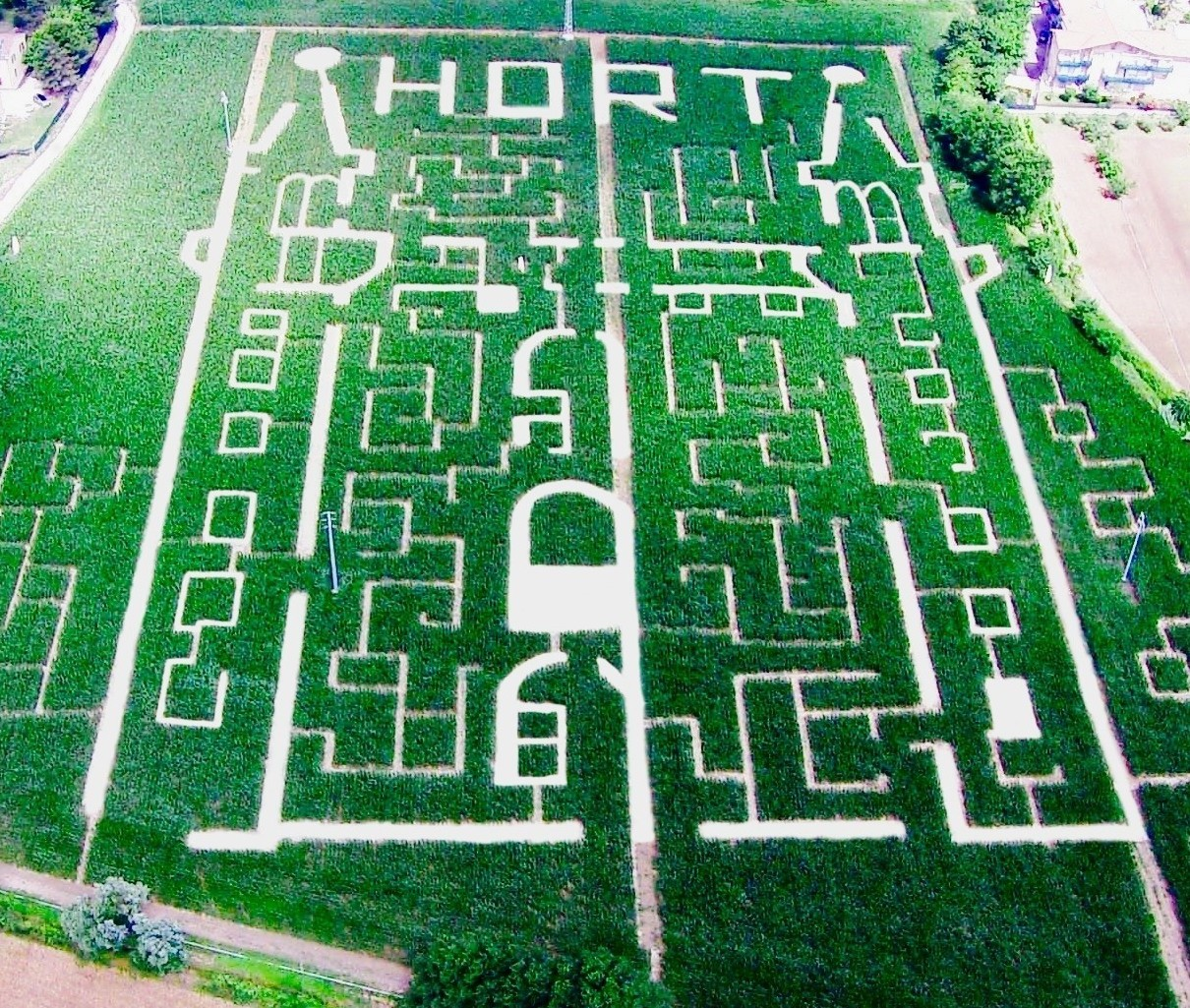 Labirinto di Mais / Corn maze  - 2012 | 2013 | 2014 | 2015 | 2016 | 2017