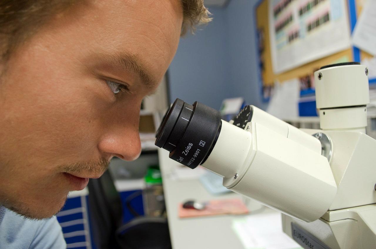 research, horticulture, orticoltura, ricerca e sviluppo, tecnica, analisi, orto, laboratorio, analisi pianta,