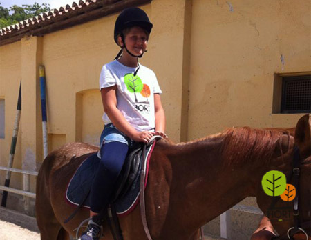 cavallo, maneggio