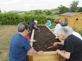 A.S.M. Agricoltura Sociale nelle Marche/Social farming - 2019   2021