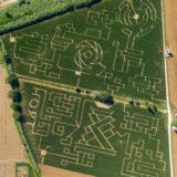 Senigallia, fotografia, labirinto di mais, summer jumboree