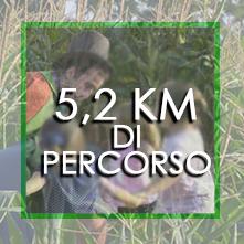 Km di percorso
